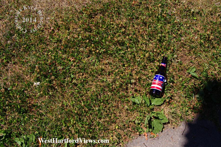 Patriotic Litter